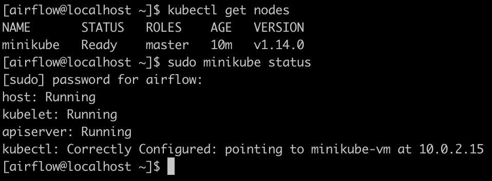 output_minikube_check